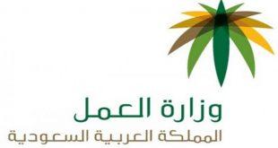 شعار-وزارة-العمل-Copy