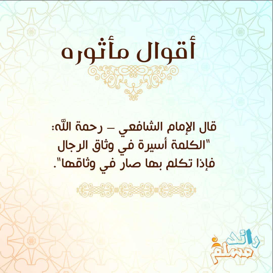 shaf3y1