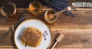 كيف تؤسس مشروع منحل عسل؟