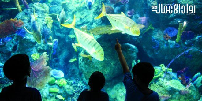 """دراسة جدوى مشروع """"حديقة أسماك زجاجية"""""""