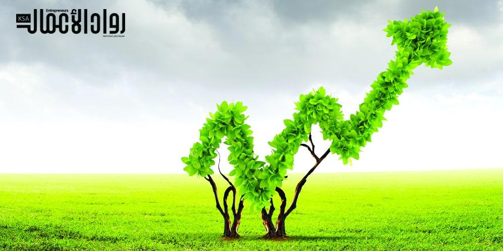 الاقتصاد والبيئة