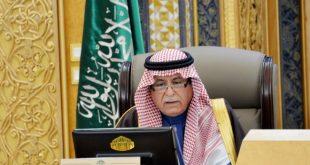 السعوديات في وظائف الحكومة