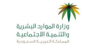 وزير الموارد البشرية السعودي