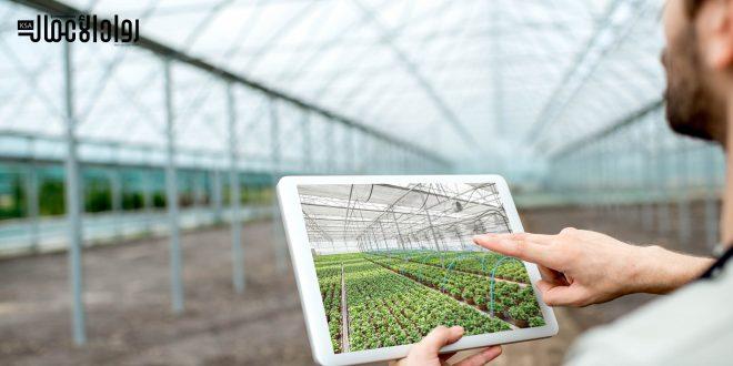 أفكار المشاريع الزراعية المناسبة للبدء