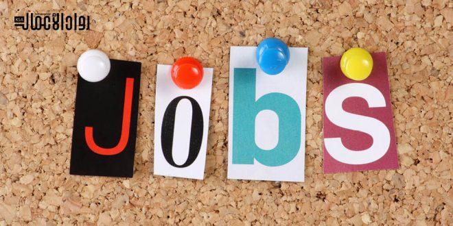 الوظائف الأكثر طلبًا في العالم