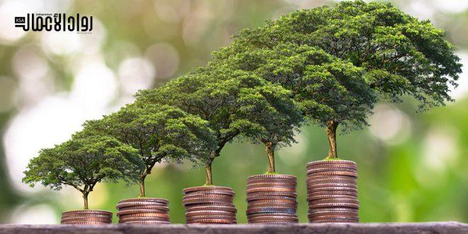 التنمية الاقتصادية المستدامة.. فلسفة الحلول الوسط