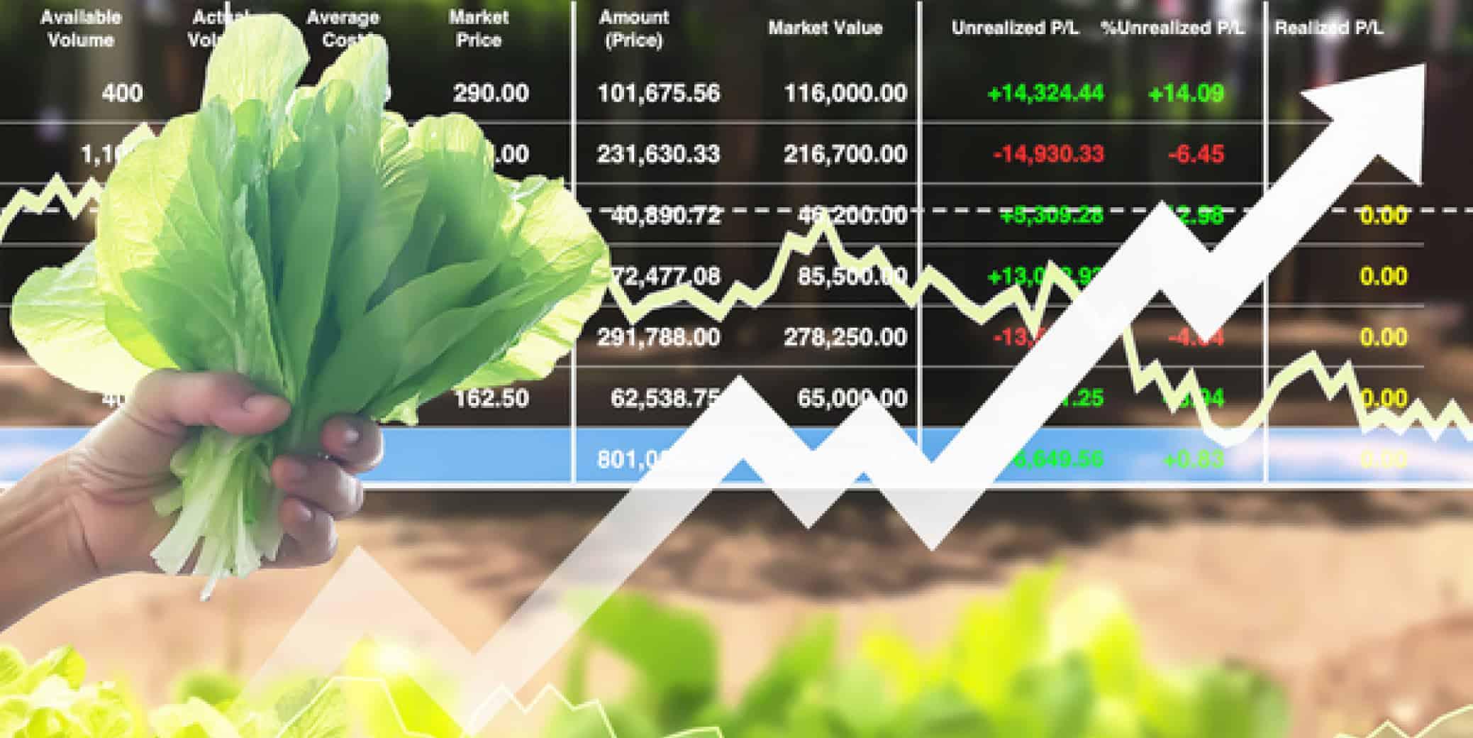 كيف تستعين بالتكنولوجيا في الزراعة