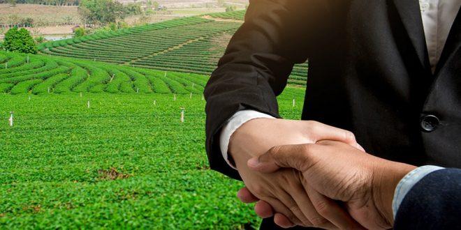 برنامج الاستثمار الزراعي