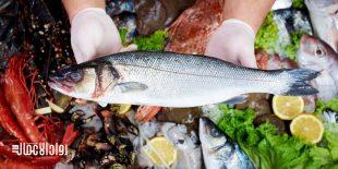 مشروع محل بيع الأسماك