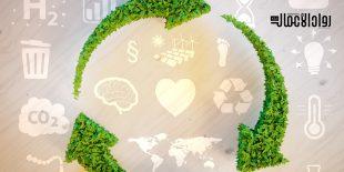 المشاريع البيئية في المملكة