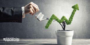 الاستثمار الوهمي