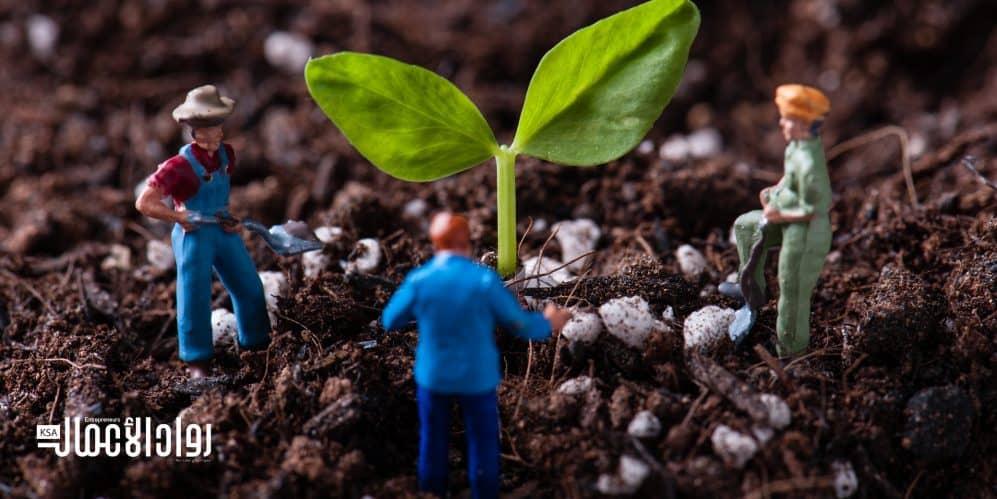 ريادة الأعمال الزراعية.. تحولات الأداء والإنتاج