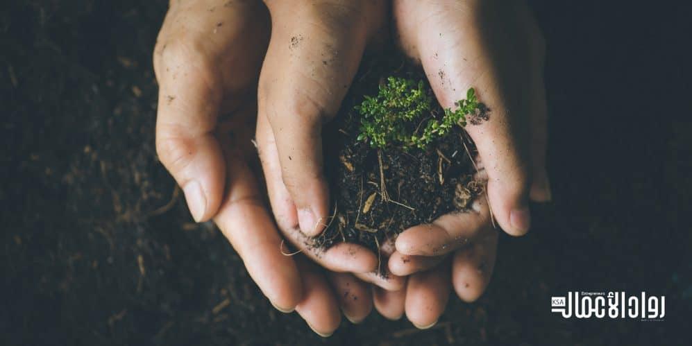 استراتيجيات الشركات للحفاظ على كوكب الأرض