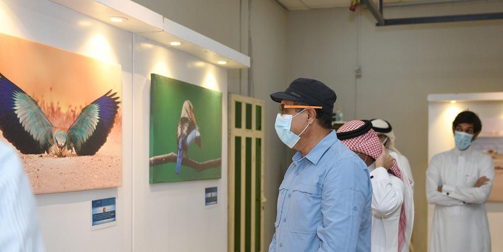 """""""سلوك الطيور"""" معرض تصوير فوتوغرافي في الدمام"""