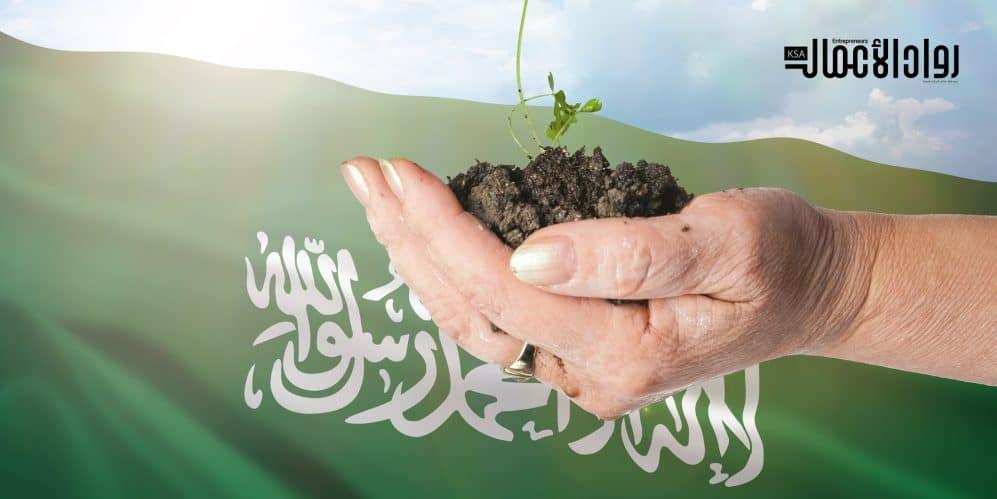 مؤشرات الأداء البيئي.. جولة جديدة من نجاحات المملكة