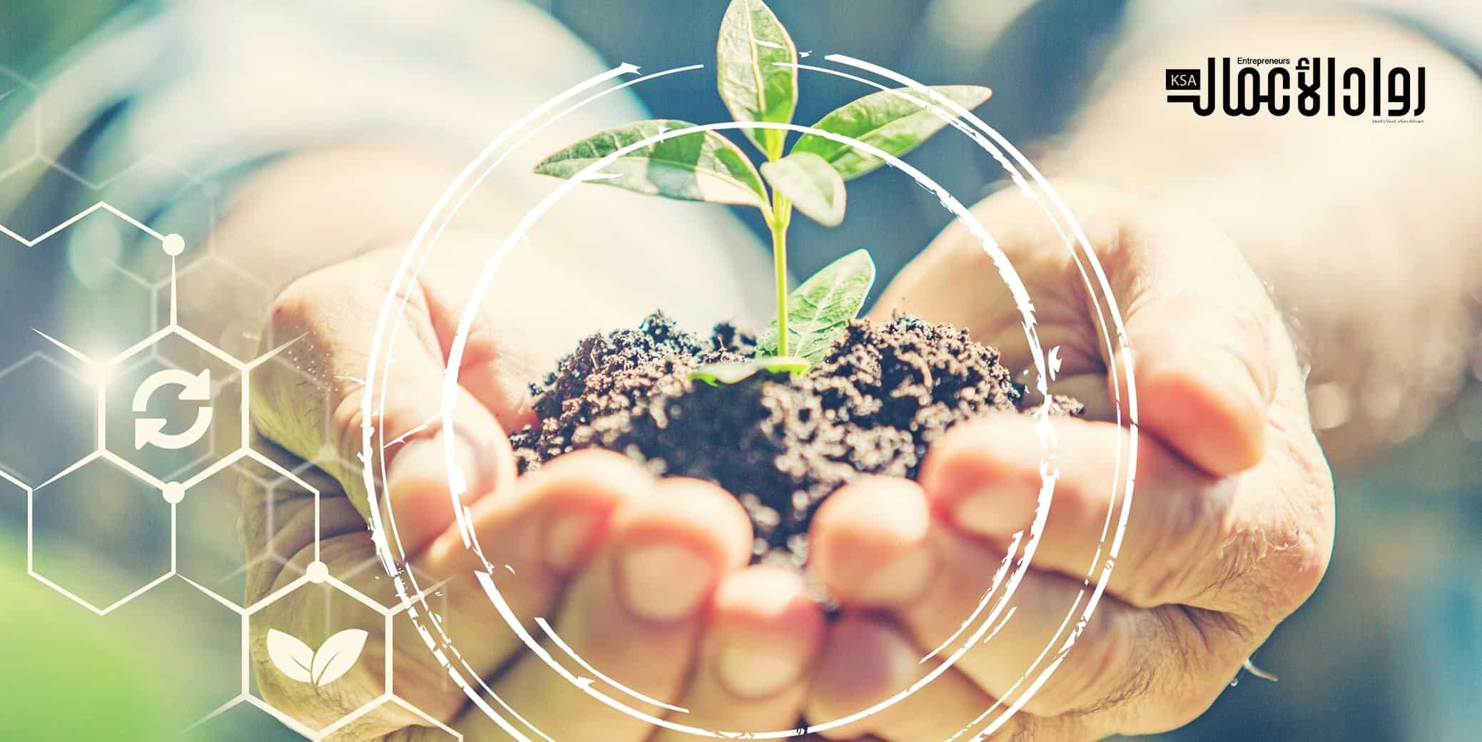 الحوكمة البيئية
