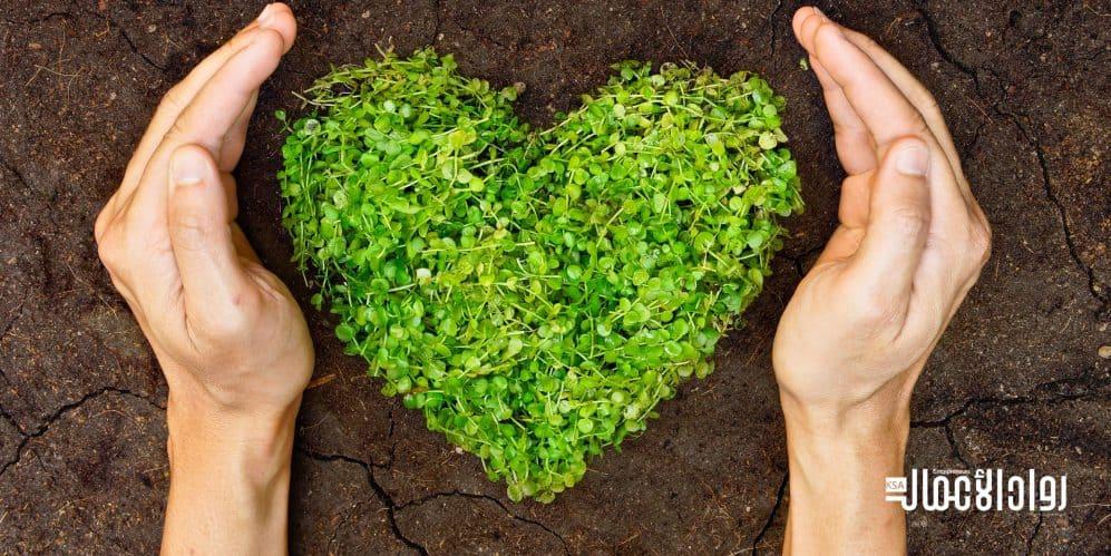 المسؤولية البيئية للشركات