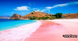 أجمل الشواطئ الوردية في العالم